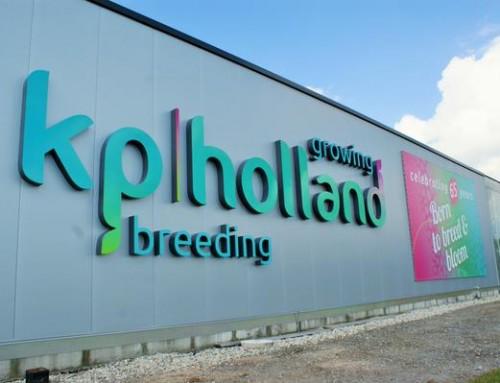 KP-holland Huisstijl